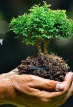 विश्व पर्यावरण दिवस पर भाषण एवं निबंध – World Environment Day Essay & Speech in Hindi