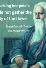 रबीन्द्रनाथ टैगोर का जीवन परिचय (Rabindranath Tagore Biographyin hindi)