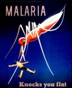 मलेरिया के कारण , मलेरिया के उपचार , Malaria in Hindi