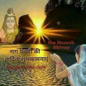 नाग पंचमी पूजा, व्रत विधि, कथा व महात्म्य , Naag Panchami in Hindi , नाग पंचमी की पूजा व्रत विधि