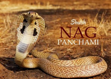 Naag Panchami in Hindi
